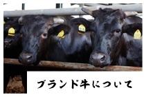 ブランド牛について